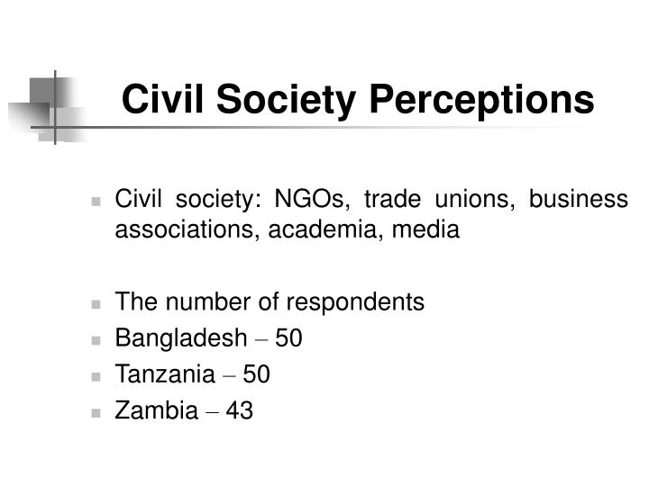 Civil Society Perceptions