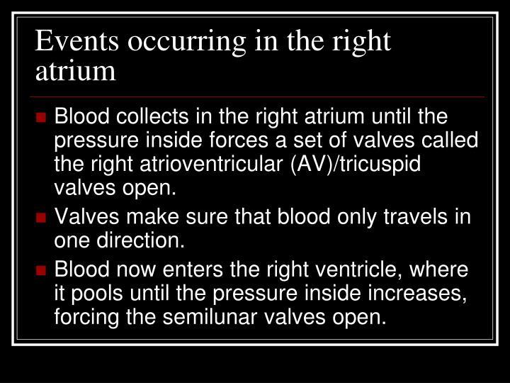 Events occurring in the right atrium