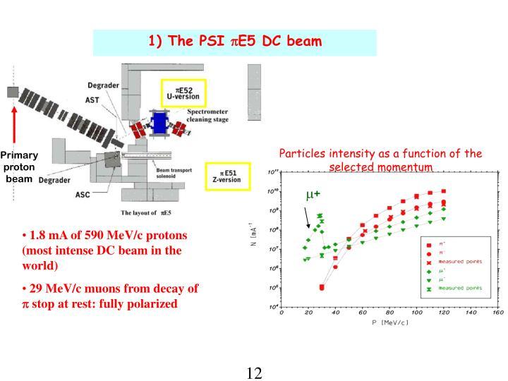 Primary proton beam