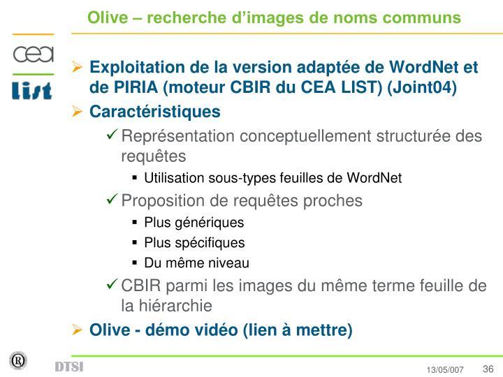 Olive – recherche d'images de noms communs