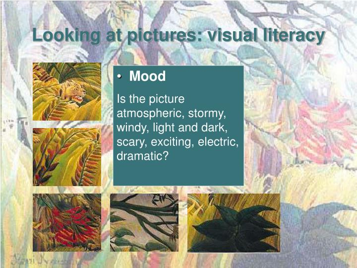 Looking at pictures: visual literacy