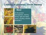 looking at pictures visual literacy4