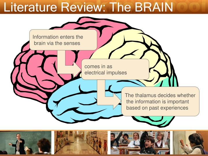 Literature Review: The BRAIN