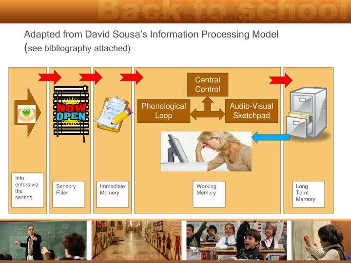 Adapted from David Sousa's Information Processing Model