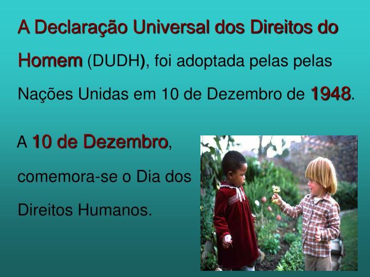 A Declaração Universal dos Direitos do Homem