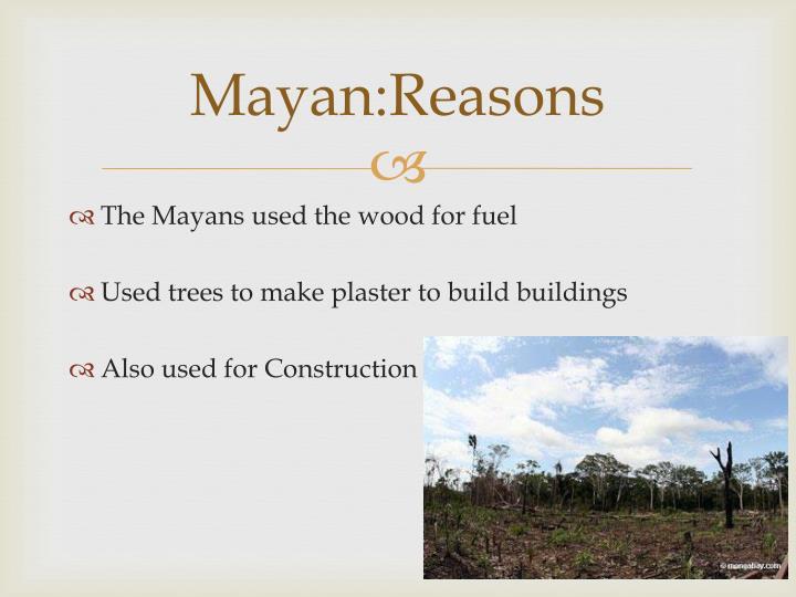 Mayan:Reasons