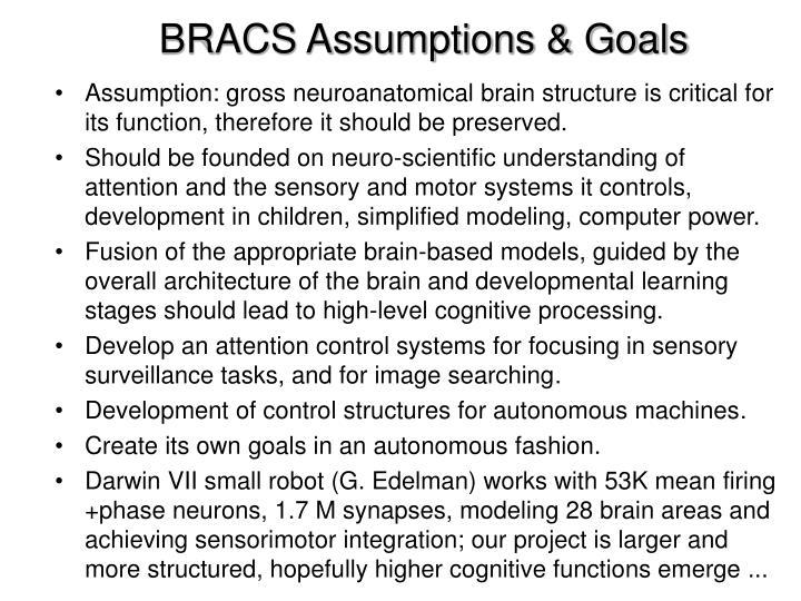 BRACS Assumptions & Goals