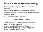 brain and visual system modelling