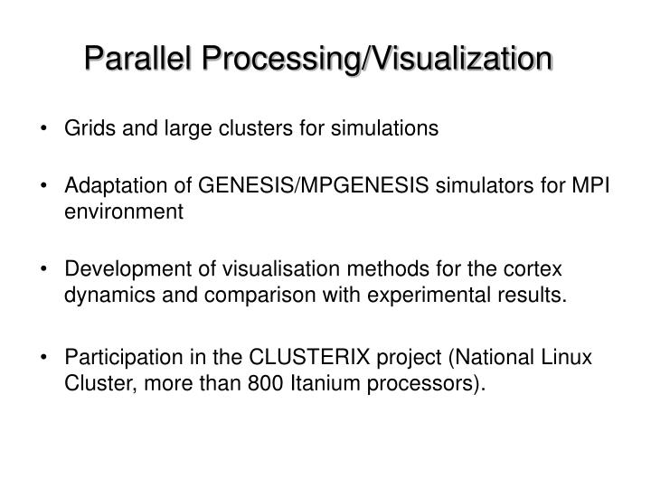 Parallel Processing/Visualization