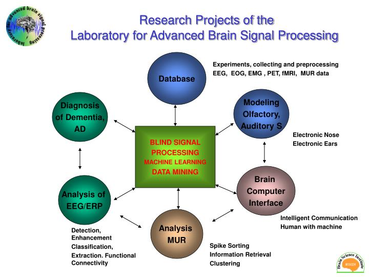 Research Projects of the