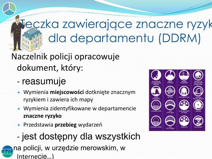 Teczka zawierające znaczne ryzyko dla departamentu (DDRM