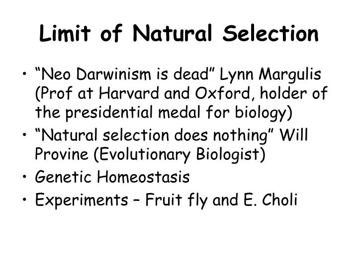 Limit of Natural Selection