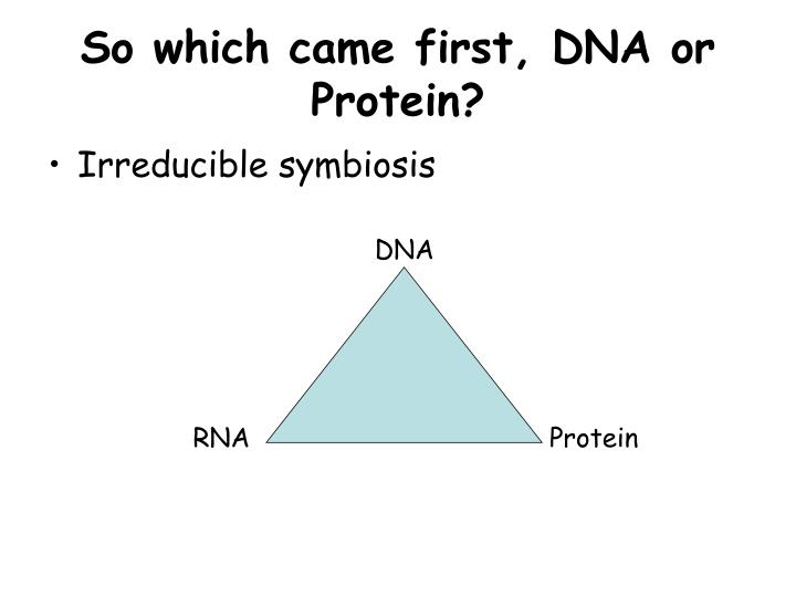 So which came first, DNA or Protein?