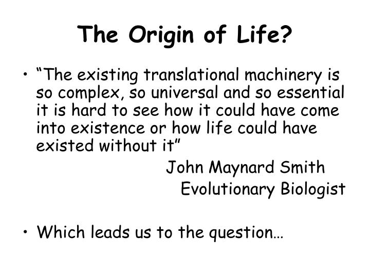 The Origin of Life?