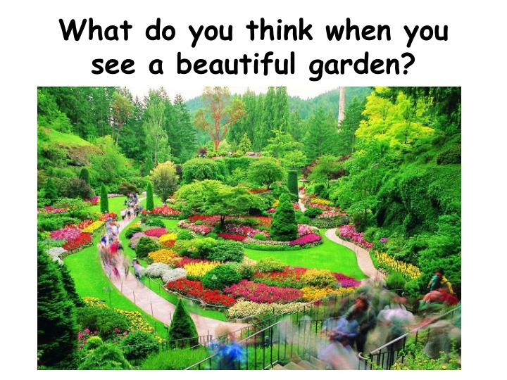 What do you think when you see a beautiful garden?