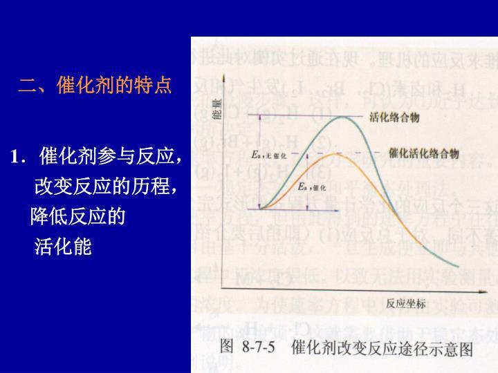 二、催化剂的特点