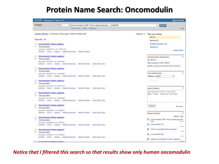 Protein Name Search: