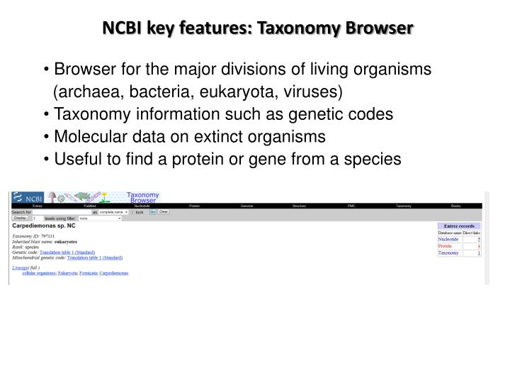 NCBI key features: Taxonomy Browser