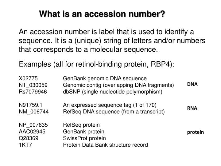 What is an accession number?