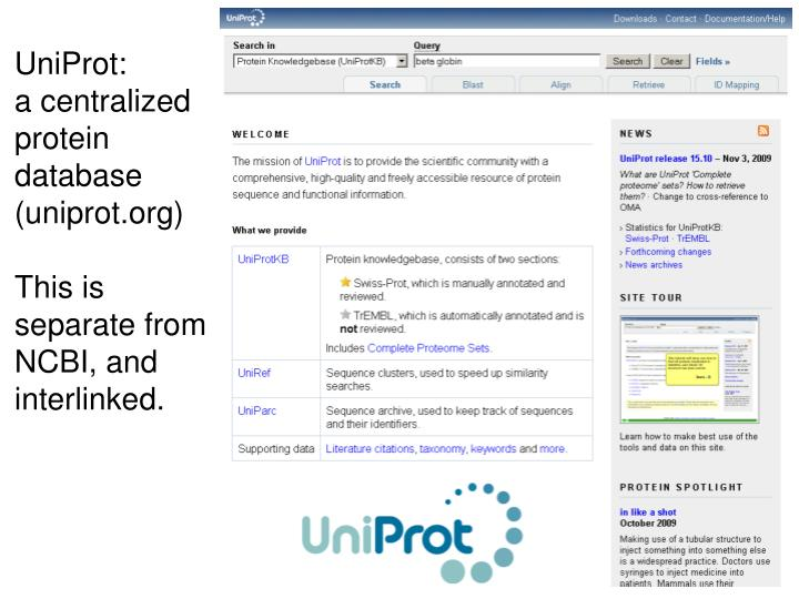 UniProt: