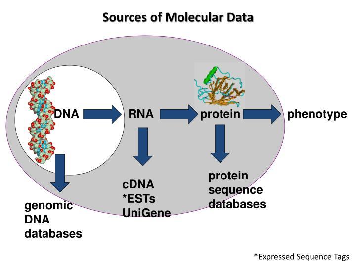 Sources of Molecular Data