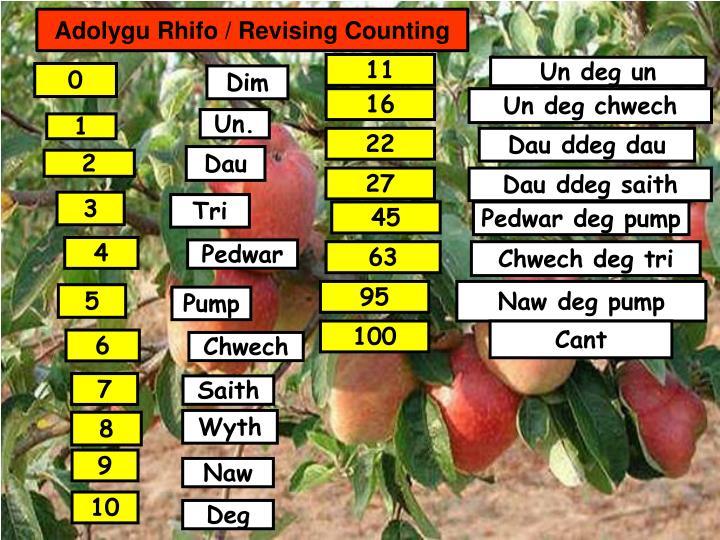 Adolygu Rhifo / Revising Counting