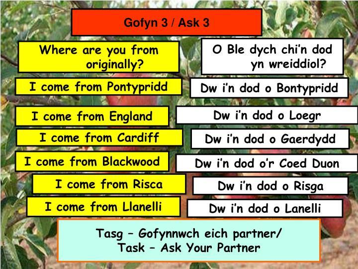 Gofyn 3 / Ask 3