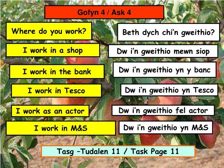Gofyn 4 / Ask 4
