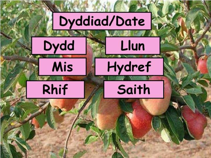 Dyddiad/Date