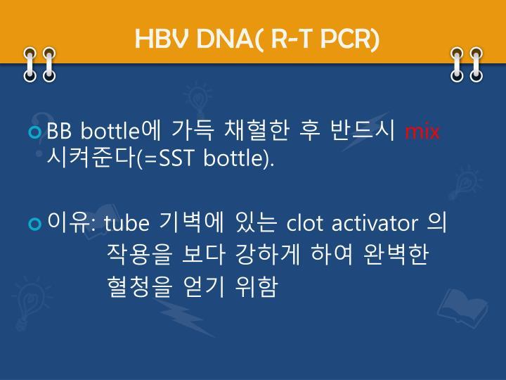 HBV DNA( R-T PCR)