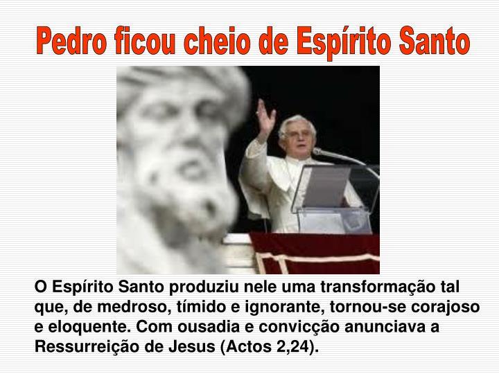 Pedro ficou cheio de Espírito Santo