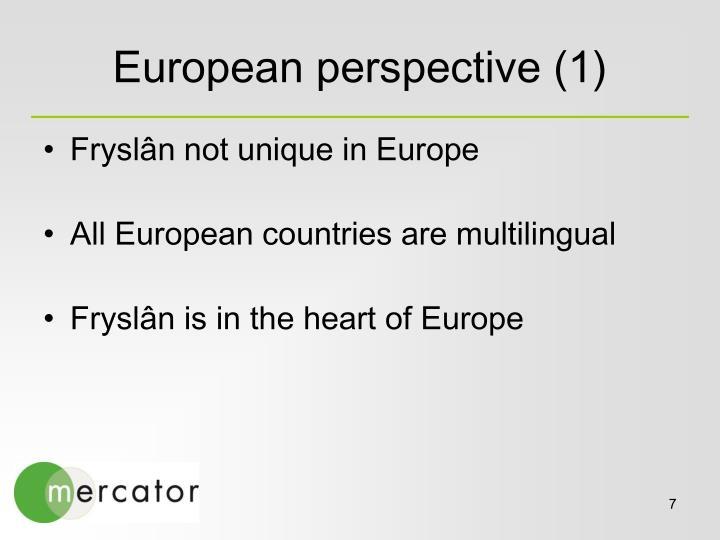 European perspective (1)