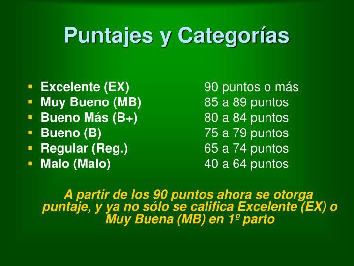 Puntajes y Categorías
