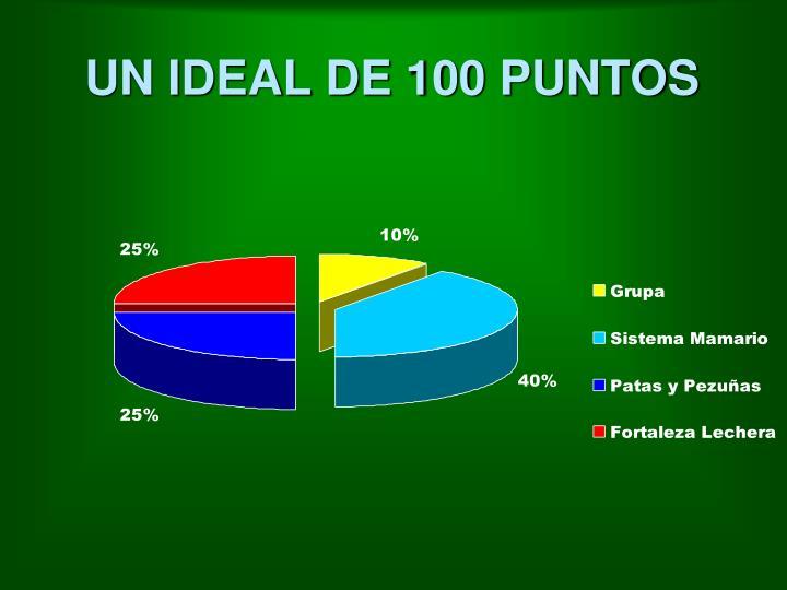 UN IDEAL DE 100 PUNTOS