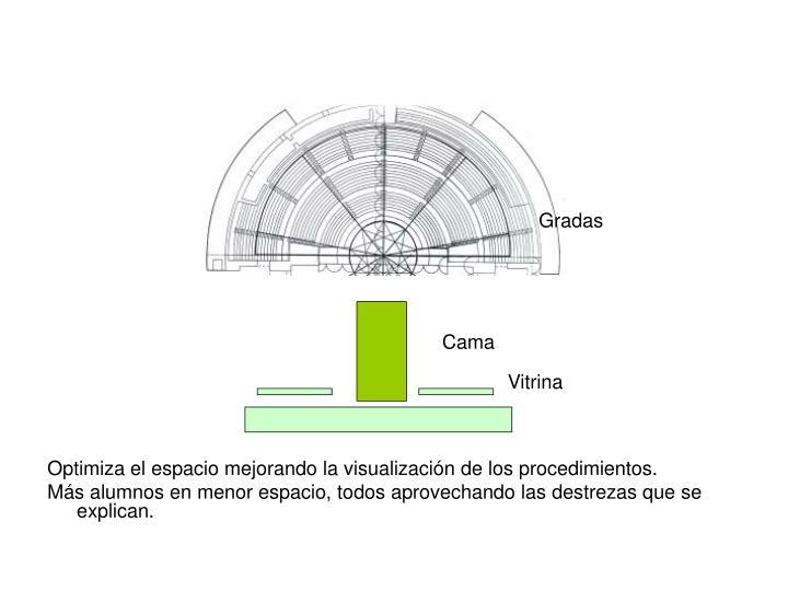 Optimiza el espacio mejorando la visualización de los procedimientos.