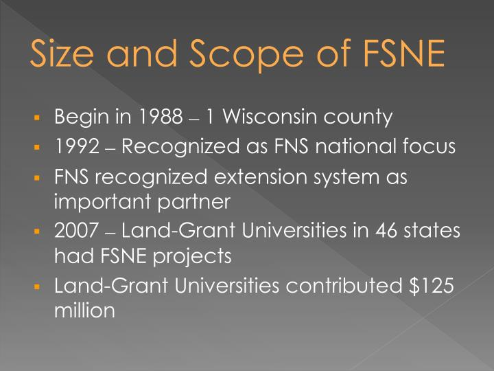 Size and Scope of FSNE