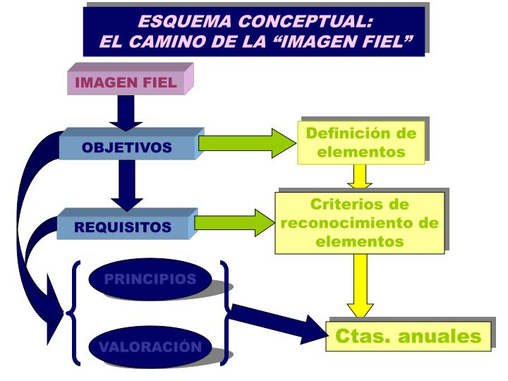 ESQUEMA CONCEPTUAL: