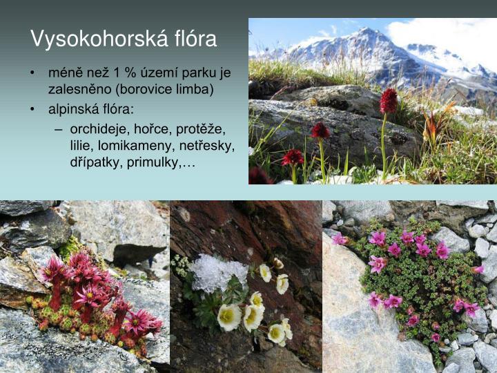 Vysokohorská flóra