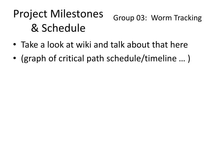 Project Milestones & Schedule