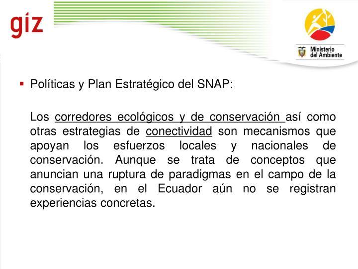 Políticas y Plan Estratégico del SNAP: