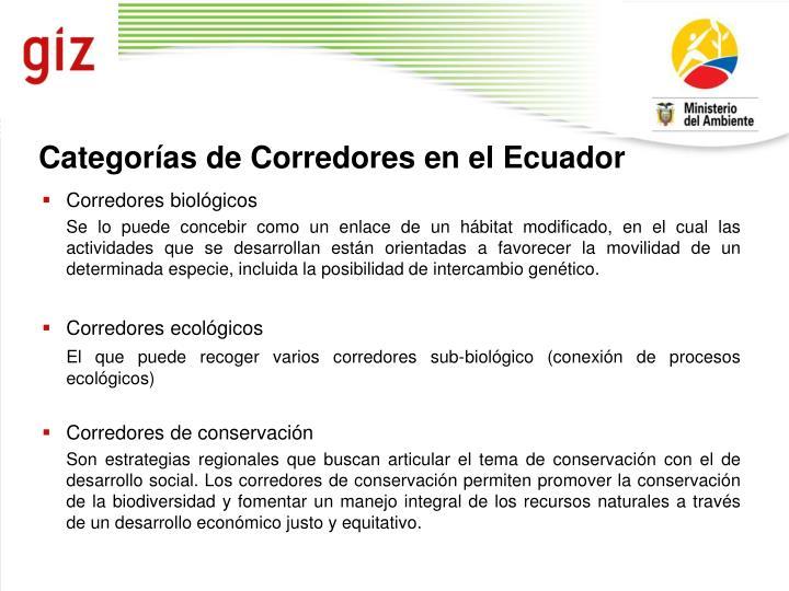 Categorías de Corredores en el Ecuador