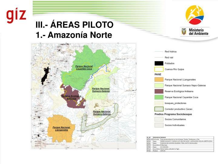 III.- ÁREAS PILOTO