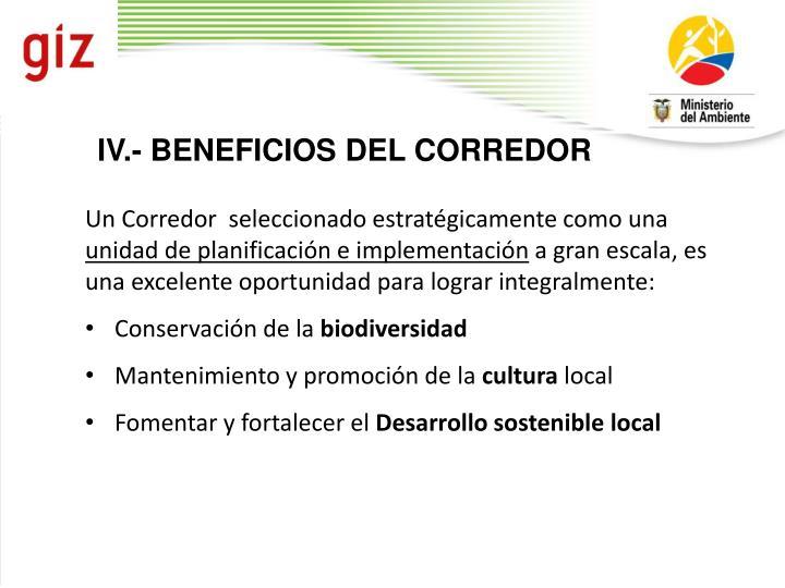 IV.- BENEFICIOS DEL CORREDOR
