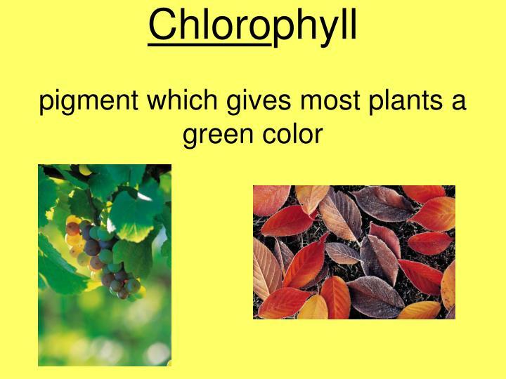 Chloro