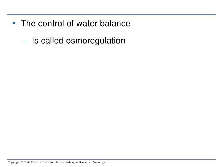 The control of water balance