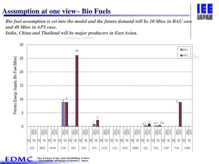 Assumption at one view– Bio Fuels