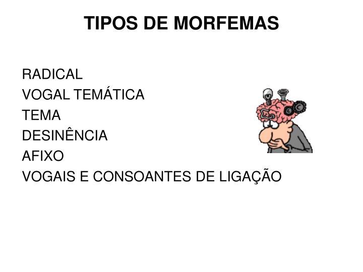 TIPOS DE MORFEMAS