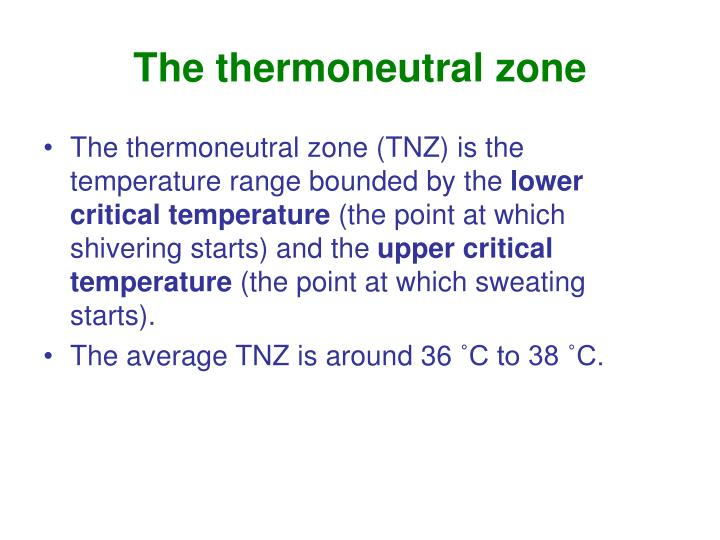 The thermoneutral zone