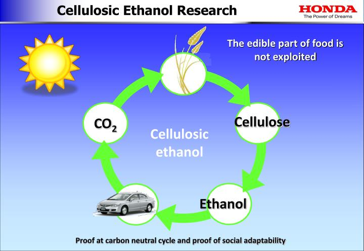 Cellulosic Ethanol Research