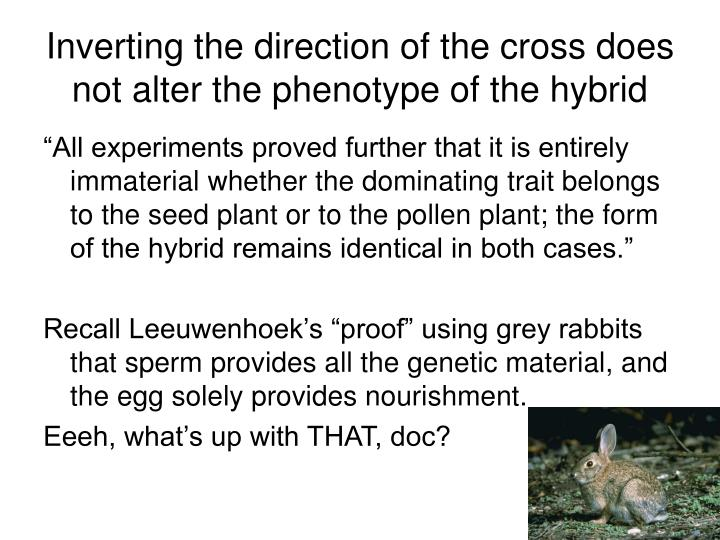 Inverting the direction of the cross does not alter the phenotype of the hybrid